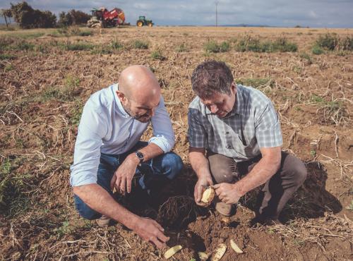 Christophe & Guy en communion devant nos patates © Gaetan Clément