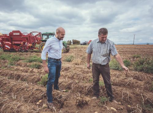 Christophe, le big boss du Ninkasi & Guy, le producteur de pommes de terre dans le champ du Mas-Rillier © Gaetan Clément