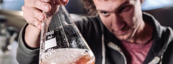 Découvrez 5 utilisations insolites de la bière !